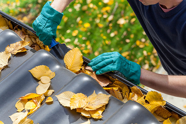 Gutter cleaning company in Toronto